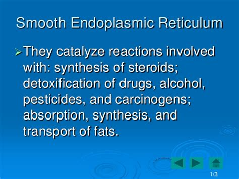 Smooth Endoplasmic Carcinogenic Detox by The Cell