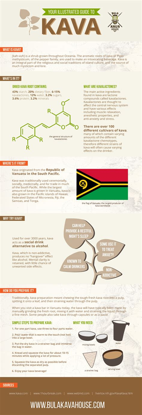 kava house your illustrated infographic guide to kava bula kava house