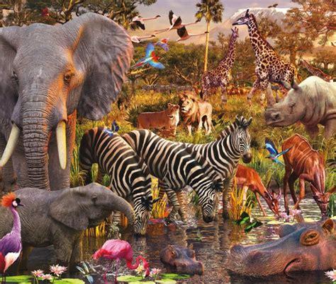 imagenes animales de africa rompecabezas de animales de africa www regalosoriginales mx
