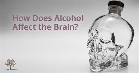 Does Affect Detox Drinks by What Happens To Your Brain When You Drink The Recovery