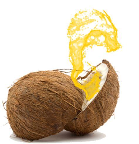 tips membuat minyak kelapa sendiri science history