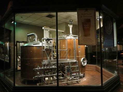 john harvard s brew house brewing picture of john harvard s brew house lake grove tripadvisor