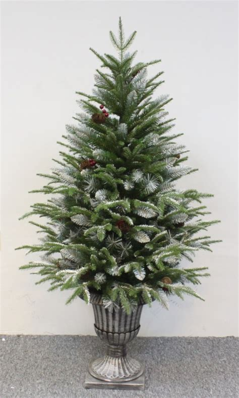 10 ft christmas trees uk the outdoor frosted fir 3ft to 4ft