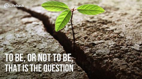 questions   change  life