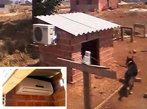 dog houses with ac pet owner installs ac unit in dog house