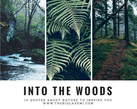 quotes about nature 15 beautiful quotes about nature and wilderness to inspire you