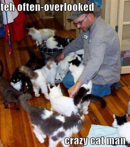 Crazy Cat Man Meme - 11 best pics of the crazy cat lady meme