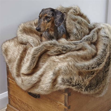 dog blanket for sofa pet blankets for sofa pet blankets for sofa home and