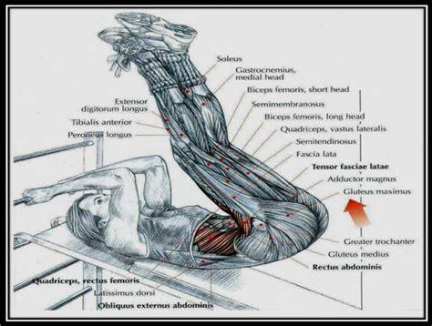 incline bench leg raises incline leg raises workout muscle best free home