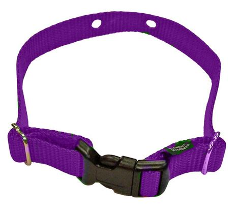 fence collar invisible fence microlite collar images