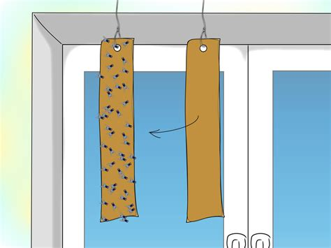 Make Your Own Fly Paper - how to make sticky fly paper 28 images fly glue traps