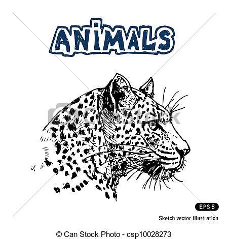 imagenes de jaguares para dibujar ilustraciones vectoriales de jaguar mano dibujado
