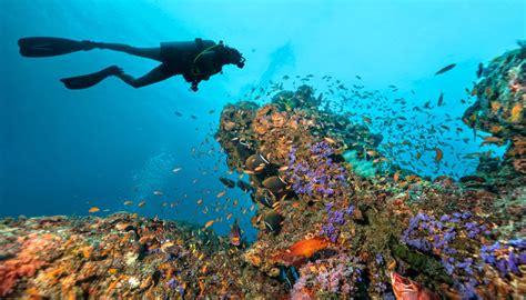 maldives scuba diving   thrilling sites