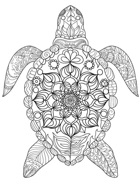 296 best images about the sea coloring pages for