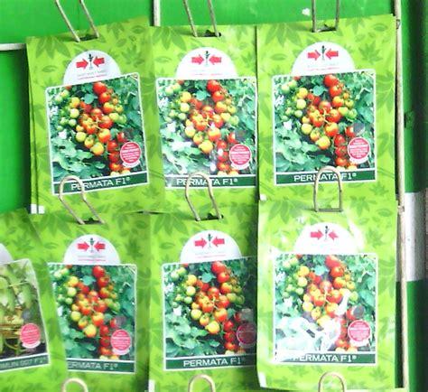 Benih Tomat Permata F1 jual benih tomat permata f1 cap panah merah nasa store