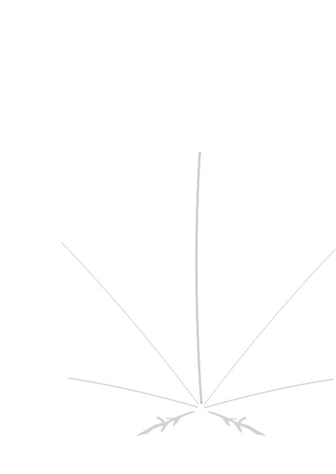 weed leaf outline clipart best