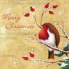 Red Robin E Gift Card - animals red robin on pinterest robins robin bird and christmas cards