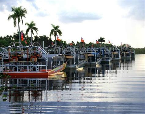 everglades boat tour griffin everglades vip tour fort lauderdale all you need to