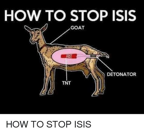 How To Meme - how to stop isis goat detonator tnt isis meme on me me
