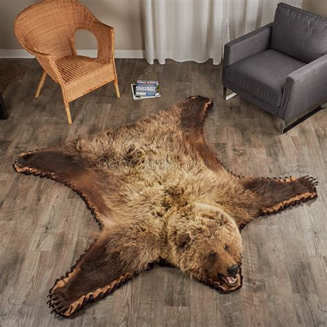 grizzly skin rug 6 foot 0 inch 183 cm grizzly rug 7000652 02