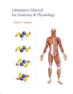 anatomy coloring book half price books laboratory manual for anatomy physiology book by elaine