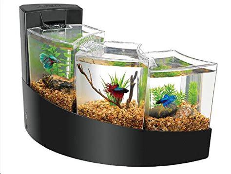 betta tank aqueon kit betta falls fish tank equipmentfish tank