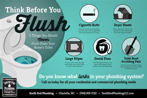 Plumbing Blogs by Think Before You Flush Never Flush These 5 Things To