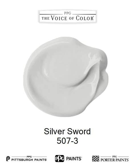 ppg voice of color 51 best 2018 paint color of the year black images