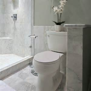 Carrara Marble Bathroom Ideas by Carrera Marble Bathroom Carrera Marble Tile Bathroom