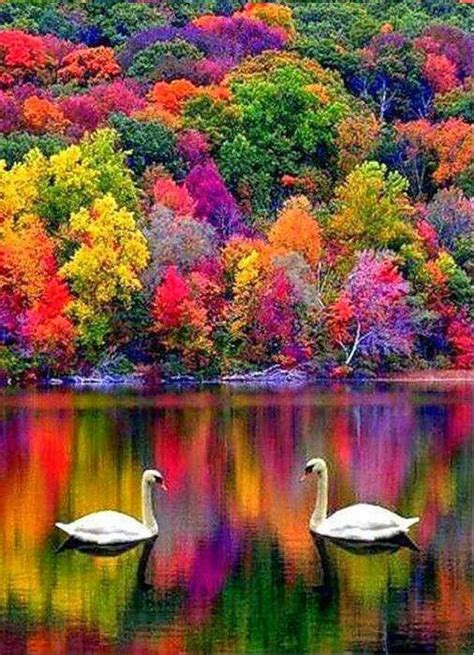 most beautiful colors colorful scenery just because pinterest beautiful