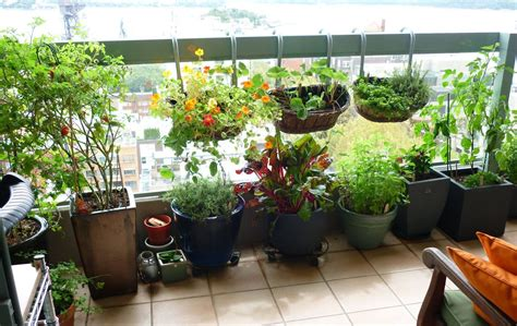 balcony gardening for beginners balcony ideas