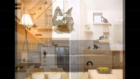 cat room cat room decorations ideas