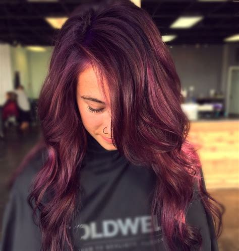 mulberry hair color its a mulberrypurple color alert a stunning new hair color