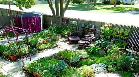 self sufficient backyard top 10 tips for urban homesteading self sufficiency