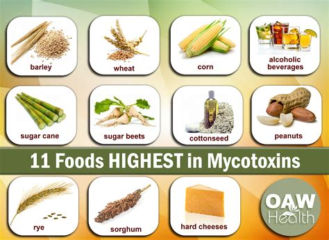 How To Detox Aflotoxins by 11 Foods Highest In Mycotoxins