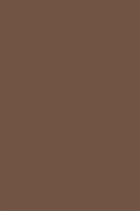 brown paints interiors  color