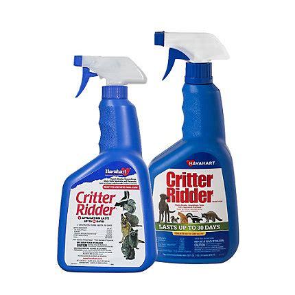 Pengusir Kucing Cat Repellent Spray Ready Stock critter ridder animal repellent rtu spray havahart 174