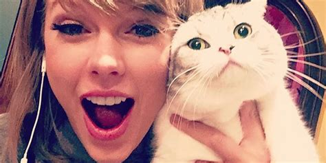 taylor swift cat video taylor swift s cat meredith is not a party animal taylor