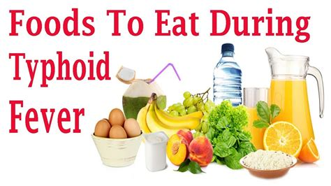 best diet foods for typhoid fever best diet for treatment of