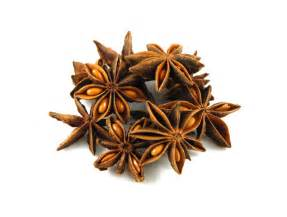 Star anise pods from savory spice
