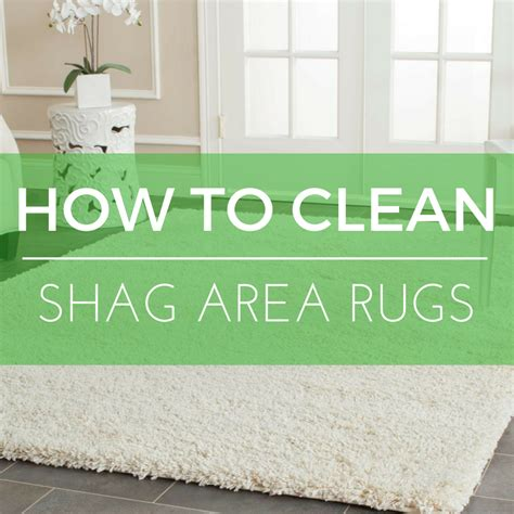How To Clean An Area Rug At Home by How To Clean A Shag Area Rug Roselawnlutheran