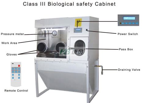 class ii biological safety biosafety www imgkid com the image kid has it