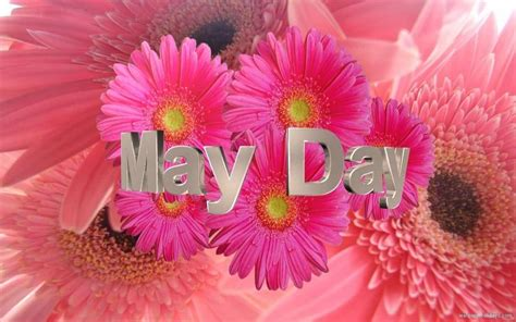 day images 25 most adorable may day basket pictures and images