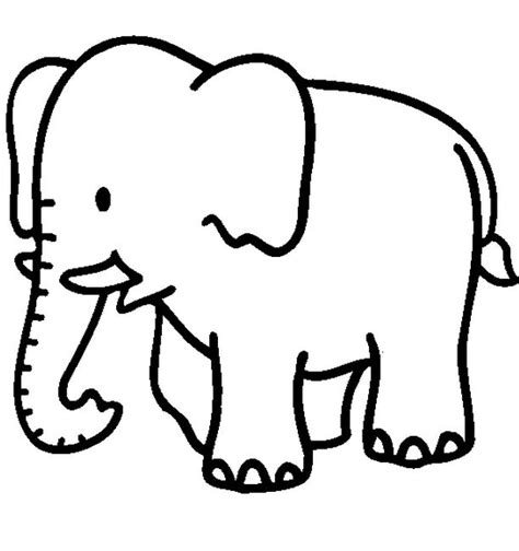 simple jungle coloring page cute jungle animal coloring pages coloring pages
