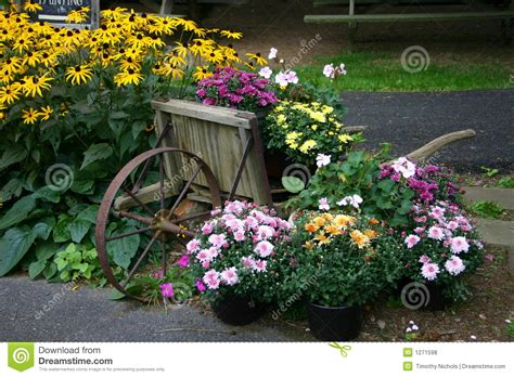 Garden Flowers A Z Flower Garden Display With Wheelbarrow Stock Photo Image 1271598