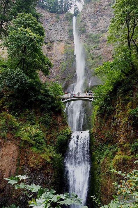 columbia river waterfalls photos a few days at gifford pinchot columbia river gorge
