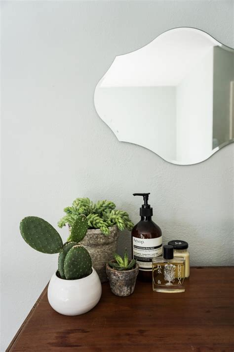 succulents in bathroom 25 best ideas about bathroom plants on pinterest plants