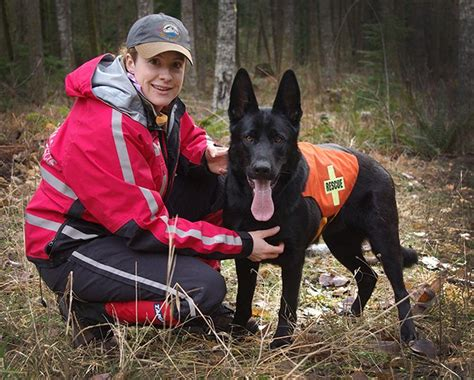 how to a for search and rescue search and rescue dogs for sale vom banach k9