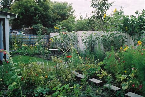 garden pictures garden 2004