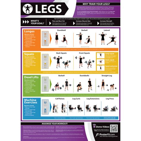 product layout exercise posterfit legs exercise poster
